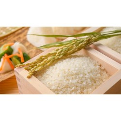JAPANESE RICE 10kg Quality 3 (highly mix)